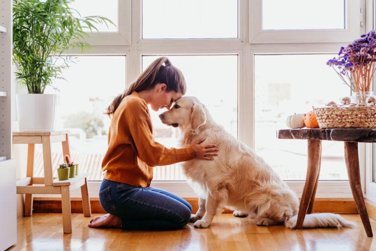 Περίπατος με το σκύλο εν καιρώ καραντίνας