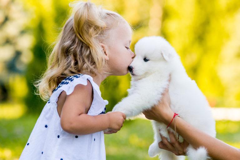 Φιλί σε κουτάβι