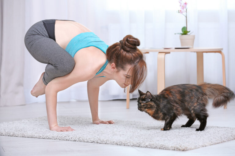 Γιόγκα με γάτα